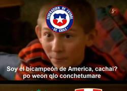 Enlace a Viva Chile