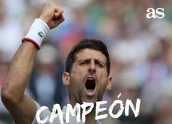 Enlace a Djokovic campeón de Wimbledon