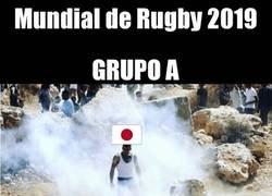 Enlace a Los grupos del Mundial de Rugby