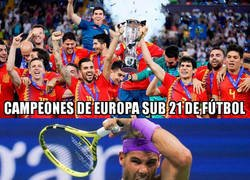 Enlace a Un gran año para el deporte español