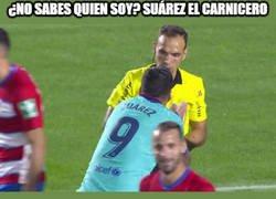Enlace a Suárez no da crédito a la amarilla