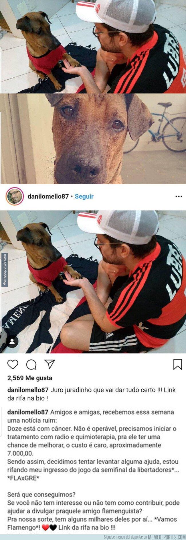 1088124 - Un hincha del Flamengo vende su entrada de la semifinal de la Copa para curar el cáncer de su perro