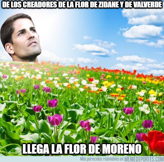 1088560 - La flor de Moreno