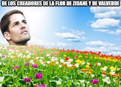 Enlace a La flor de Moreno