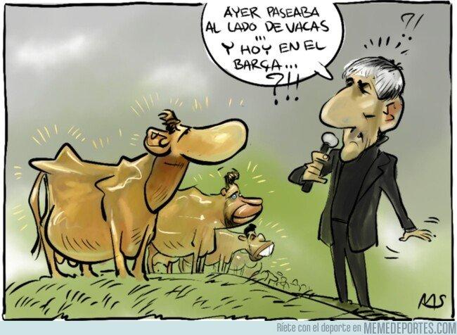 1095884 - En el Barça también hay vacas, pero estas son sagradas, por @yesnocse