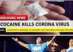 Enlace a Hay algunos que no les afectará el coronavirus