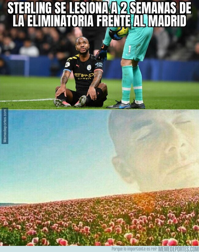 1097432 - Se acerca la Champions y la flor de Zidane lo sabe