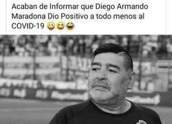 Enlace a Maradona positivo
