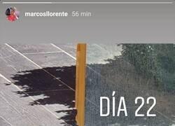Enlace a Ojito a la historia de Llorente, eh.