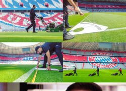 Enlace a Cualquiera de nosotros viendo como el fútbol se prepara para su puesta a punto