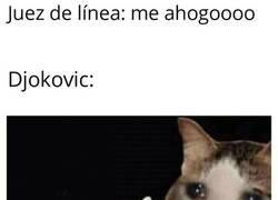 Enlace a Página negra en el palmarés de Djokovic