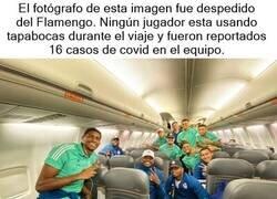 Enlace a Récord de 16 casos de coronavirus en el Flamengo. Rodaron las cabezas equivocadas.
