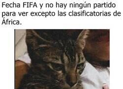 Enlace a Estas perdiendo dinero, FIFA