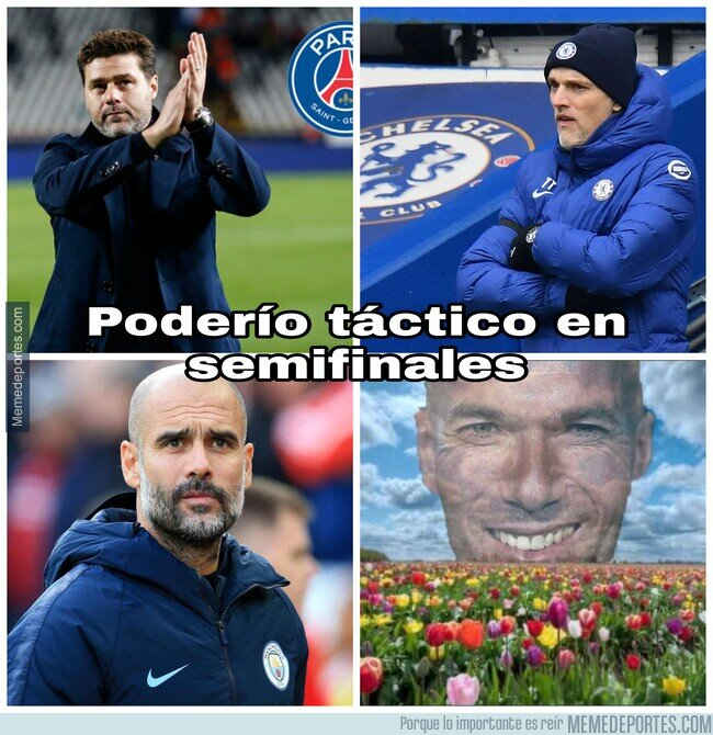 1132670 - La flor de Zidane en semis