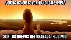 Enlace a ¡Enhorabuena al Granada por la gran temporada!