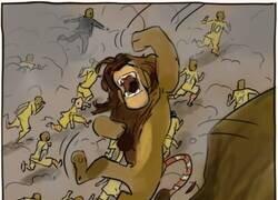 Enlace a Los leones vuelven a caer