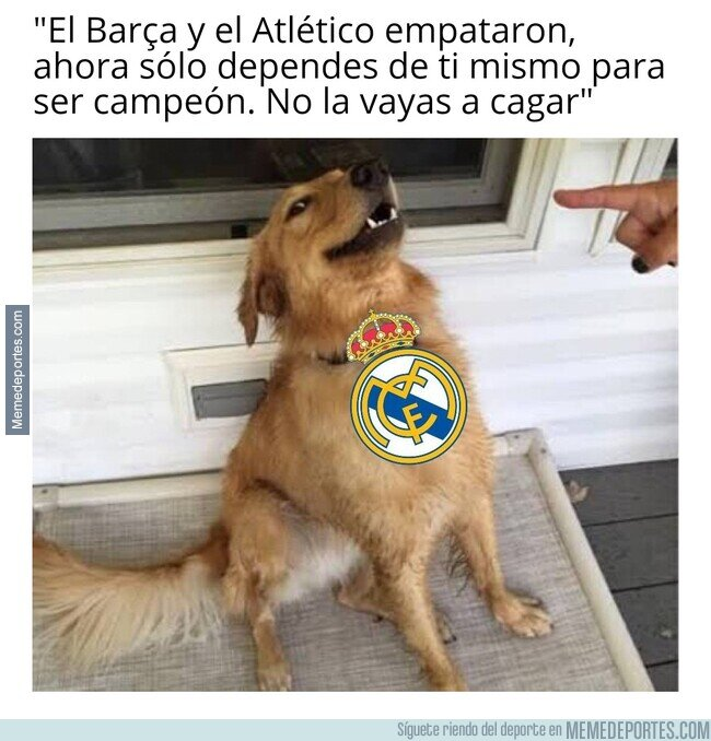 1134653 - Todo servido para el Madrid