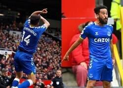 Enlace a El bicho del Everton
