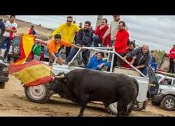 Enlace a Cuatro pueblos de Guadalajara, denunciados por maltratar toros con vehículos en sus fiestas