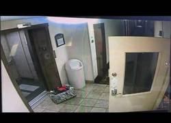 Enlace a Este hombre salva a perro de morir en un ascensor