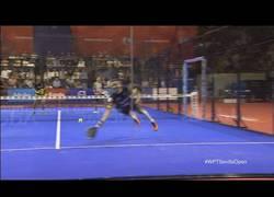 Enlace a Puntazo de pádel visto en el Sevilla Open
