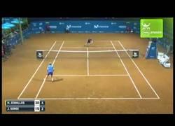 Enlace a El mejor puntazo visto en mucho tiempo en el tenis