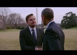 Enlace a Before the flood, el documental recomendadísimo de DiCaprio