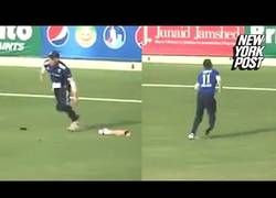 Enlace a No hay nada peor que perder la pierna mientras juegas al cricket