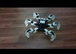 Enlace a El robot araña que dará mucha fobia a los anti arácnidos