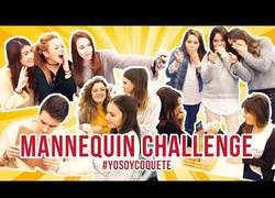 Enlace a La cafetería que se quedó congelada por el Mannequin Challenge