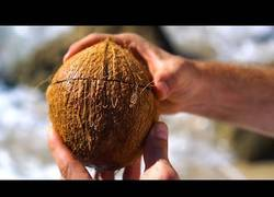 Enlace a Abriendo cocos de manera fácil... y con paciencia