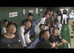 Enlace a Shohei Otani, el jugador de béisbol que sacó la bola del estadio por el tejado