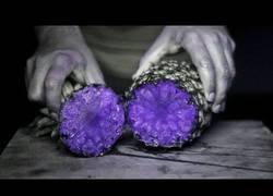 Enlace a Así se ven las frutas con luz ultravioleta
