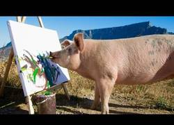 Enlace a El cerdo que quería ser el nuevo Picasso
