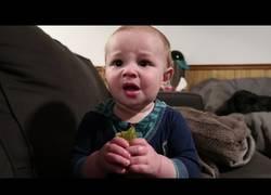 Enlace a Este niño prueba por primera vez un enorme pepinillo y no le gusta nada...