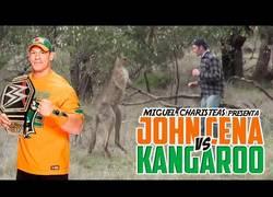 Enlace a John Cena se enfrenta al canguro que ha revolucionado internet