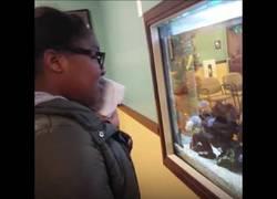Enlace a Esta chica está sufriendo mientras sigue anestesiada por los peces que se ahogan