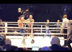 Enlace a Cuando no estás de acuerdo con la decisión del juez en un combate de boxeo