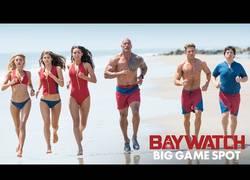 Enlace a ¡Ya vemos Zac Efron y Dwayne Johnson en acción en Los Vigilantes de la Playa