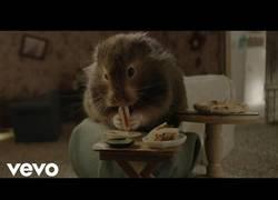 Enlace a Cocinando una mini comida para un invitado especial - El nuevo videoclip de Katy Perry