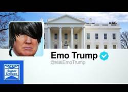 Enlace a Los tuits de Donald Trump son en realidad una canción emo del año 2000