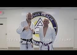 Enlace a Profesor de artes marciales te enseña a defenderte del saludo casi mortal de Donald Trump