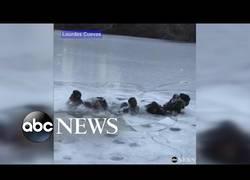 Enlace a NOTA MENTAL: Nunca jugar sobre el hielo de Central Park