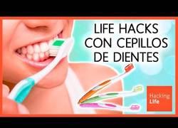Enlace a Unos consejos que te serán útiles con cepillos de dientes