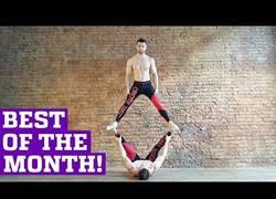 Enlace a Lo mejor de febrero de gente haciendo habilidades increíblemente alucinantes