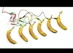 Enlace a Unos cuantos cables conectados a plátanos y tienes tu base de rap