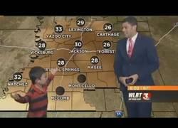 Enlace a Este niño se cuela en directo en las noticias del tiempo y se lo hace pasar mal al presentador