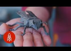 Enlace a Él es Robert Lang, es artista de origami y te dejará alucinando con su trabajo