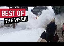 Enlace a Los mejores vídeos de la semana que han dado la vuelta al mundo
