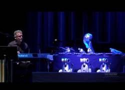 Enlace a Shimon, el robot músico
